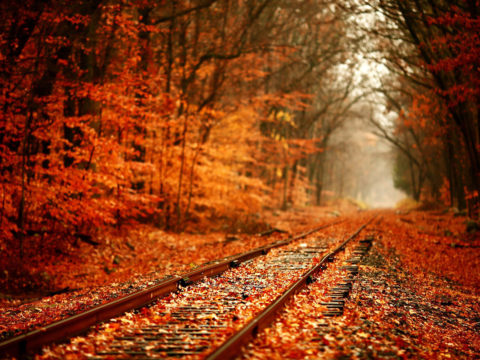 fall-desktop-backgrounds-hd-wallpaper-3