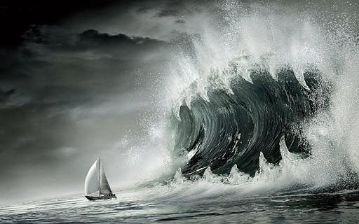 Побачивши сильний вітер